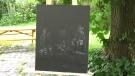 Chantal Dupuis picked up her paint brush during the COVID-19 pandemic. (Shaun Vardon/CTV News Ottawa)