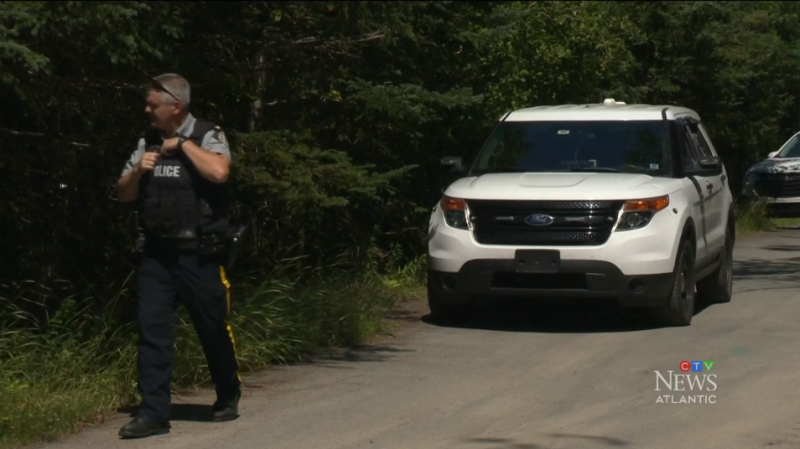 A suspect has been arrested and charged with assault and uttering threats, after RCMP were searching for an armed man in West Chezzetcook, N.S.