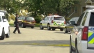 One person is dead and another was taken into custody after an incident in southwest Edmonton on Aug. 6. (Jay Rosove/CTV News Edmonton)