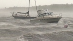 Busy Atlantic hurricane season predicted