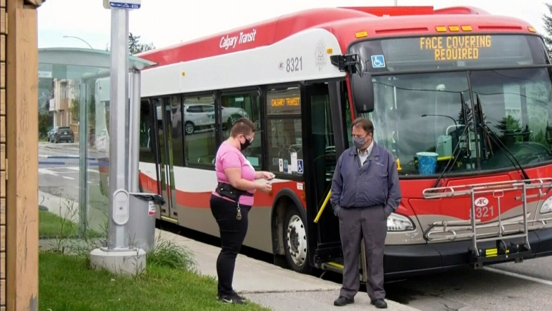 Bus driver hailed as hero