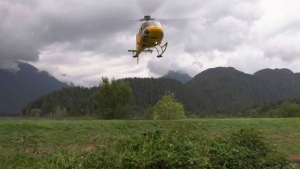 17 campers rescued from B.C. backcountry
