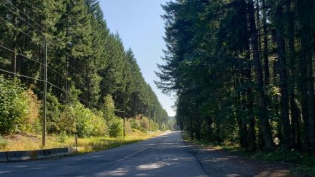 Nanaimo River Road
