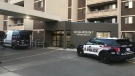 Waterloo regional police on scene of a homicide investigation after they say an infant was found dead in Kitchener. (Adam Marsh / CTV News).