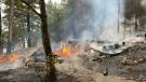 Camp on Windy Lake destroyed by fire. Aug. 10/20 (Jesse Oshell/City of Greater Sudbury Fire Services)