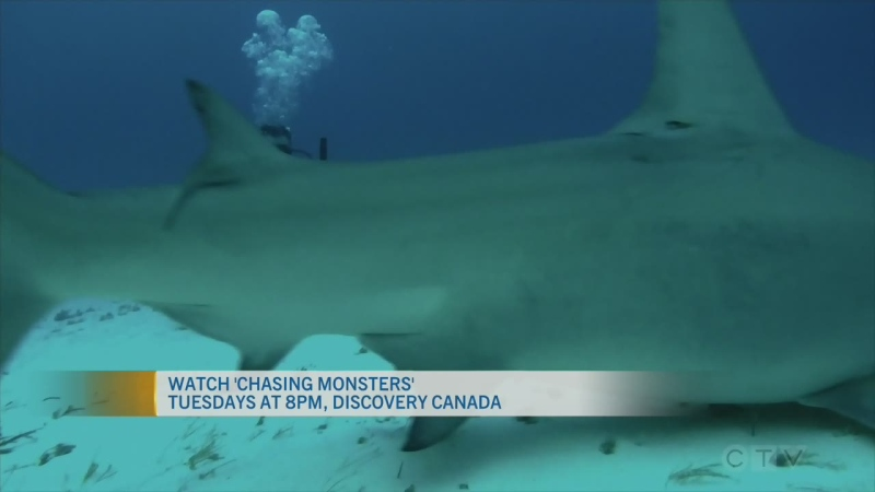 CTV Morning Live Chauquet Aug 10