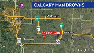 Crews are searching the Bow River near Carseland after a man failed to return to shore during a Sunday swim (Google Earth)