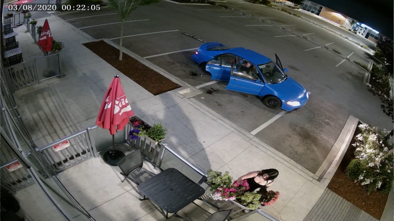 Restaurant patio thief caught on camera