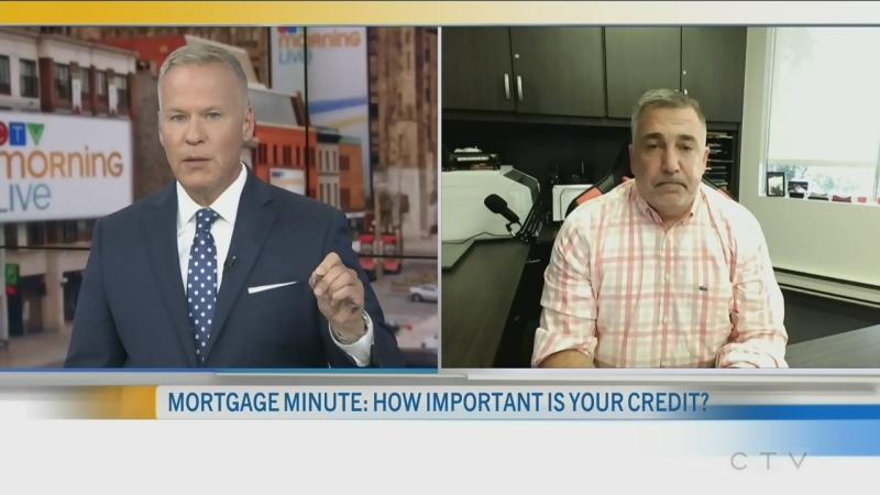 CTV Morning Live Napolitano Aug 11