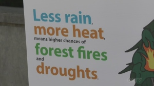 Climate change study by Sudbury's ReThink Green. Aug. 11/20 (Ian Campbell/CTV Northern Ontario)