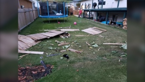 A Corvette ZR1 crashed through a fence and struck a home in Peace River, Alta. Monday, Aug 10, 2020, then fled, according to police. (Handout)