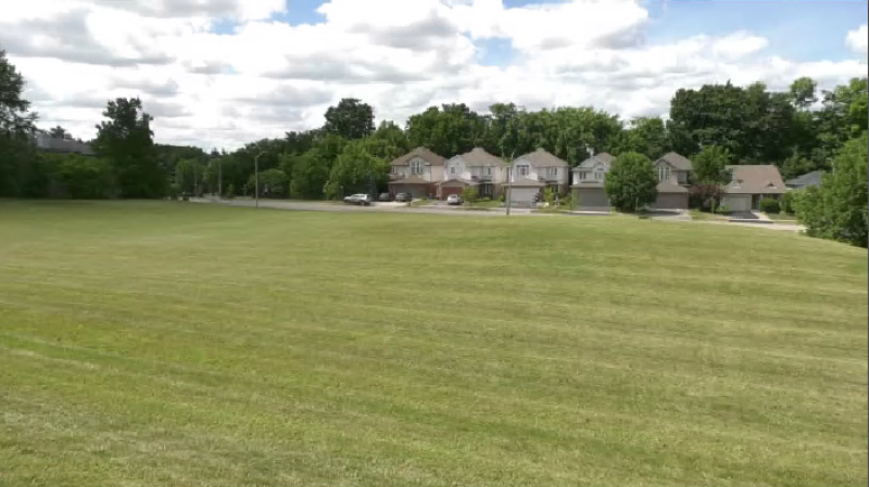 A stretch of greenspace on Beechwood Drive in Waterloo is expected to be the site of development for an affordable housing project. (CTV Kitchener) (Aug. 11, 2020)