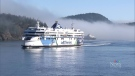 Taxpayer bailout for BC Ferries