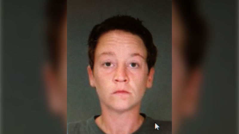 Danielle Pitts, 34, reported missing from a care facility in Leamington, Ont. (courtesy Ontario Provincial Police)
