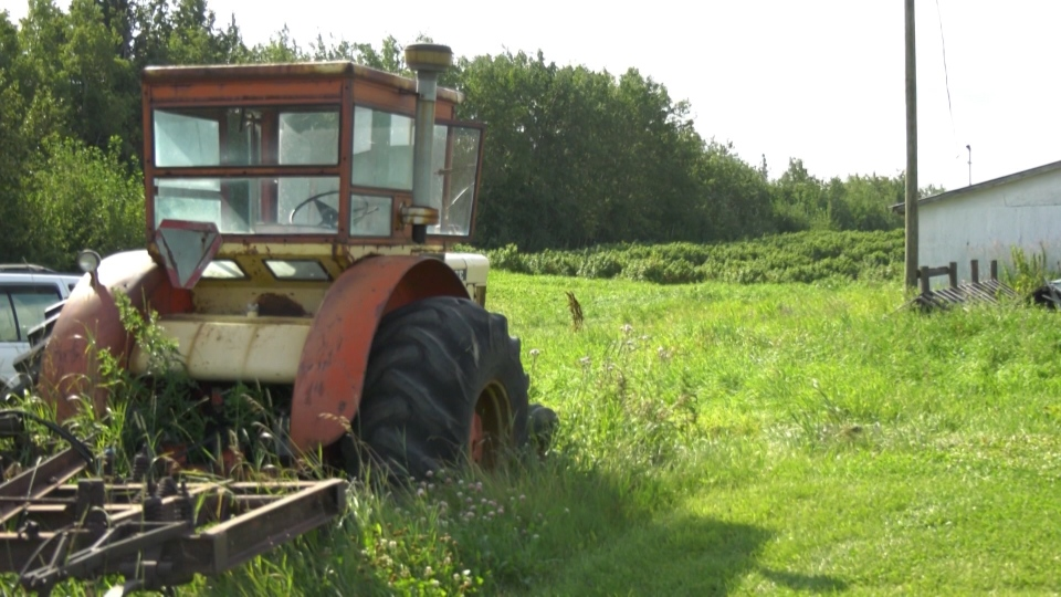 A tractor in a field at Barr Estate Winery in Strathcona County. Aug. 12, 2020. (CTV News Edmonton)