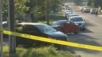 1 dead in early morning stabbing