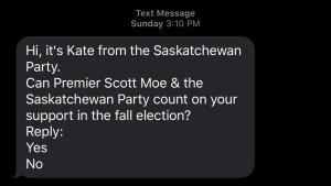 Kate Sask Party