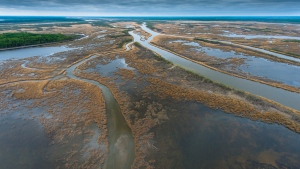 The Saskatchewan River Delta spans 10,000 km2, encompassing the northern part of the province and Manitoba. (Submitted/Garth Lenz)