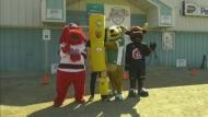 Pense makes case for Hockeyville