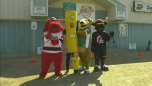 Pense makes case for Hockeyville