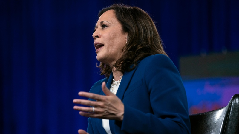 Democratic presidential candidate former Vice President Joe Biden's running mate Sen. Kamala Harris, D-Calif., speaks during a virtual grassroots fundraiser at the Hotel DuPont in Wilmington, Del., Wednesday, Aug. 12, 2020. (Carolyn Kaster/AP/CNN)