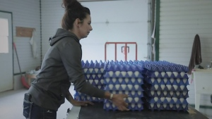 F2F: Egg Farmers of Ontario
