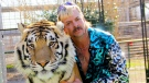 Joseph Maldonado-Passage aka Joe Exotic and one of his cats in the Netflix docuseries 'Tiger King: Murder, Mayhem and Madness.' The zoo closed after a federal agency suspended its licence. (Courtesy of NETFLIX / CNN)