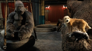 "This image released by Disney Plus shows Ivan the gorilla, voiced by Sam Rockwell, left, and Bob the dog, voiced by Danny DeVito, in a scene from ""The One and Only Ivan."" (Disney Plus via AP)"