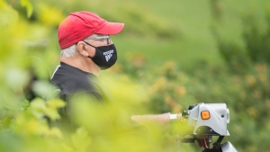A man wears a face mask as he sits in a park in Montreal, Sunday, August 9, 2020, as the COVID-19 pandemic continues in Canada and around the world. THE CANADIAN PRESS/Graham Hughes