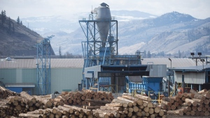 Softwood lumber is pictured at Tolko Industries in Heffley Creek, B.C. (Photo: THE CANADIAN PRESS/Jonathan Hayward)