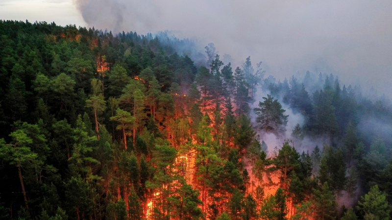 This Friday, July 17, 2020, handout photo released by Greenpeace Russia, shows a forest fire in the Krasnoyarsk region, Russia. Greenpeace Russia team has documented forest fires in the Krasnoyarsk region. While Russian authorities are failing to stop these fires, valuable for the earth's taiga, they continue to burn with consequences for the local people and make a big contribution to climate change. (Julia Petrenko, Greenpeace Russia via AP)