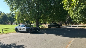 A Victoria Police vehicle is seen at Beacon Hill Park in this file photo: (CTV News)