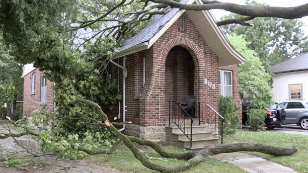 A tree came down on a home along Tecumseh Avenue in London, Ont. on Thursday, Aug. 27, 2020. (Jim Knight / CTV News)