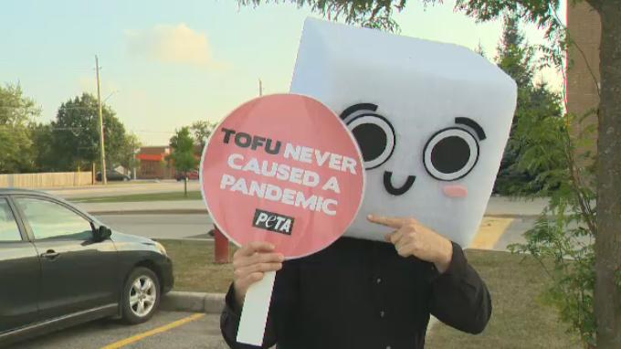 peta tofu demonstration