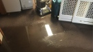Basement flooding at a home in the 3900 block of Longfellow in Windsor, Ont., on Friday, Aug. 28, 2020. (Bob Bellacicco / CTV Windsor)