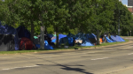 Camp Pekiwewin was established after the Edmonton EXPO Centre was closed as a temporary shelter earlier this month. Aug. 28, 2020. (CTV News Edmonton)