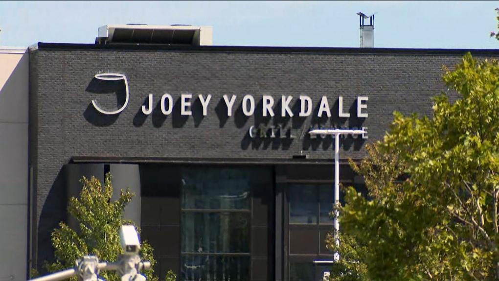 joey yorkdale