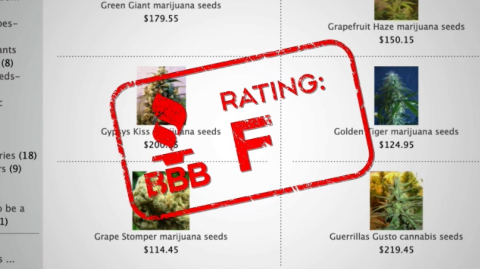 "The BBB gave Canadian Hemp Co. an ""F"" rating."