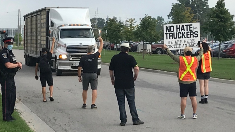 Members of London Animal Save stop a transport carrying live chickens outside the Cargill poultry processing facility in London, Ont. on Tuesday, Sept. 1, 2020. (Sean Irvine / CTV News)
