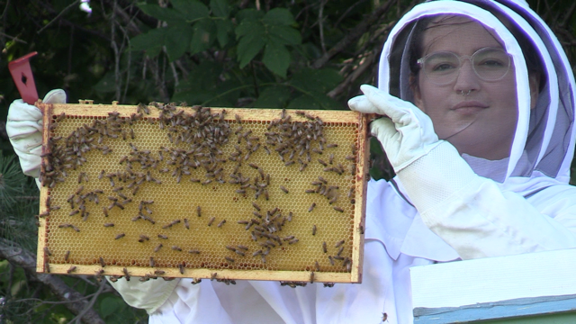 Emma Lidkea proudly holds up bees she helped raise as part of the Huron Honey Summer Project in Huron County, Ont. on Thursday, Sept. 3, 2020. (Scott Miller / CTV News)