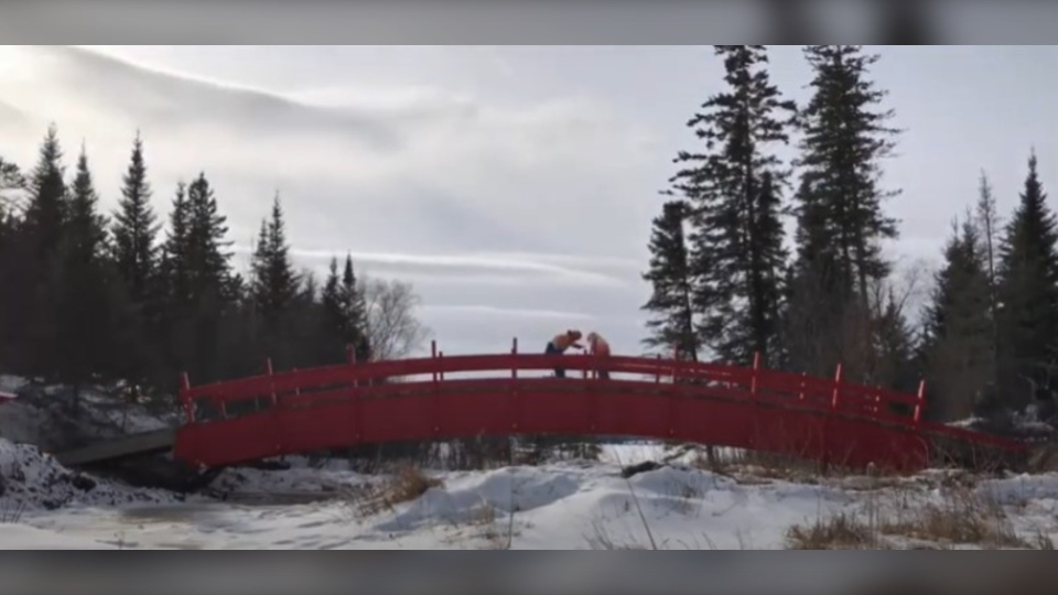 The bridge being installed at Cabin Lake. (Source Pier Solutions/Youtube)