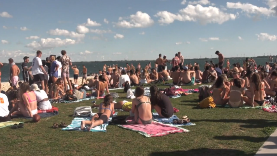 Kingston park crowds