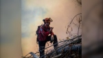 B.C. Wildfire Service crew member works at one of the province's 2020 summer blazes. (BC Wildfire Service/Twitter)