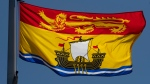 New Brunswick's provincial flag flies on a flag pole in Ottawa, Monday, July 6, 2020. (THE CANADIAN PRESS/Adrian Wyld)