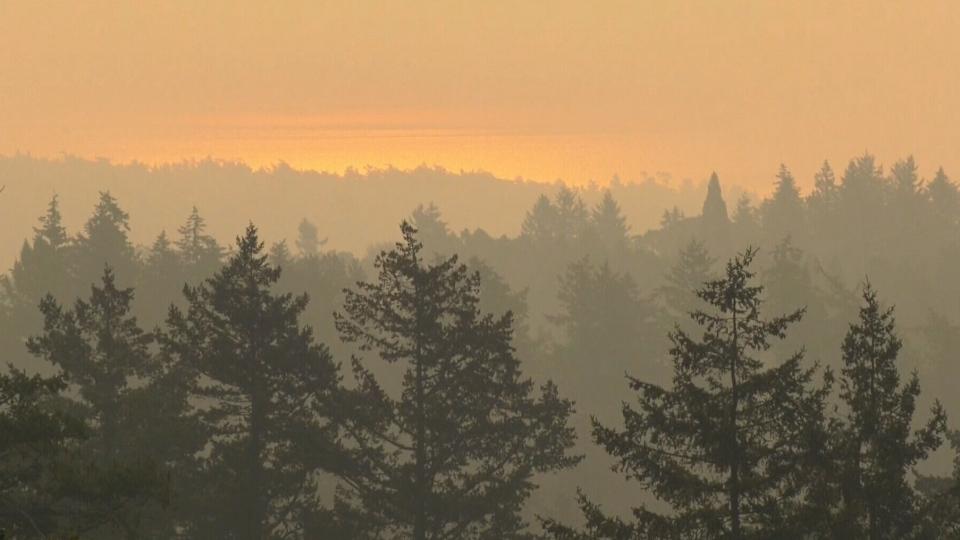 U.S. wildfire smoke sweeps over Vancouver Island