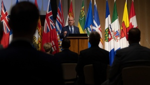 Erin O'Toole speaks at the National Caucus in Ottawa, on Sept. 9, 2020. (Adrian Wyld / THE CANADIAN PRESS)