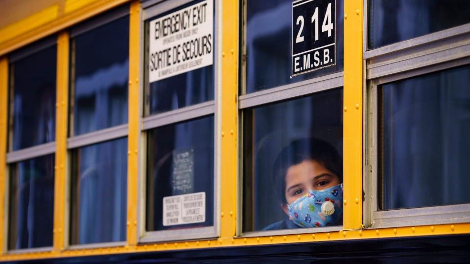 school, bus,