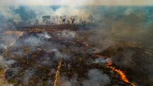 In this file photo, fire consumes land deforested by cattle farmers near Novo Progresso, Para state, Brazil, Sunday, Aug. 23, 2020. (AP Photo/Andre Penner)