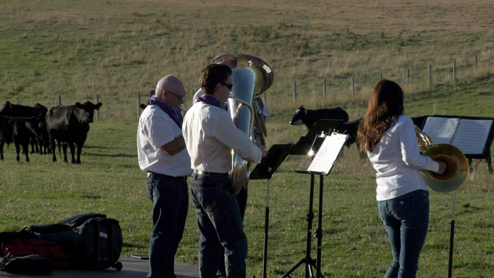 The Bridge Brass Quintet performed a concert for cows Wednesday north east of Lethbridge, Alberta