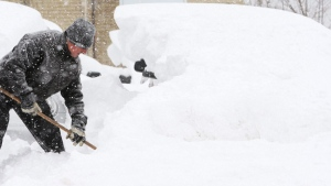 Bart Delle Donne shovels snow between buried vehicles at his service centre during a winter storm in London, Ont., Tuesday, December 7, 2010. (THE CANADIAN PRESS/Dave Chidley)